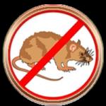 Шаблон вордпресс для сайта уничтожение насекомых